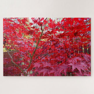 Autumn Red Maple Tree Jigsaw Puzzle