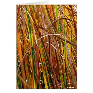 Autumn Reeds Number 5 (Vertical) Card