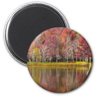 Autumn Reflection 2 Inch Round Magnet