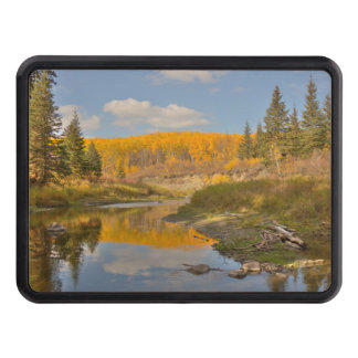 Autumn Reflections - Aspen Poplars Hitch Cover