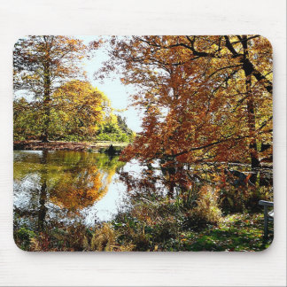 Autumn Reflections Mousepads