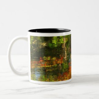 Autumn Reflections mug