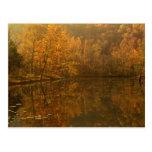 Autumn reflections on pond. postcard