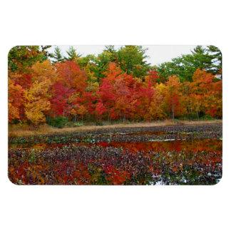 Autumn Reflections Rectangular Photo Magnet