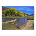 Autumn River in  Taos New Mexico Greeting Cards