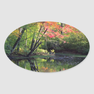 Autumn River Reflections Oval Sticker