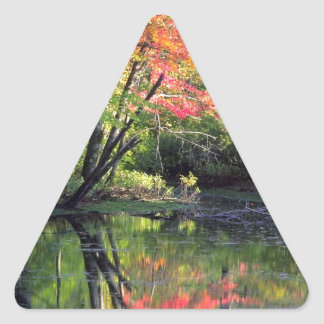 Autumn River Reflections Triangle Sticker