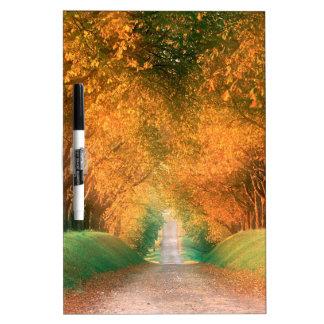 Autumn Road Cognac Region France Dry Erase Whiteboards