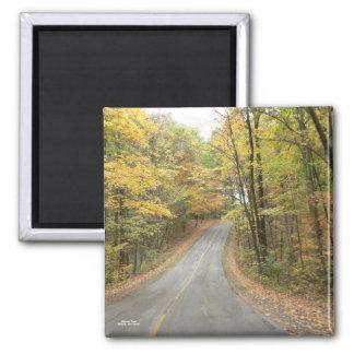 Autumn Road Magnet