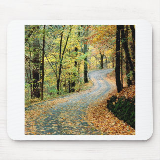 Autumn Road Percy Warner Park Mouse Pad