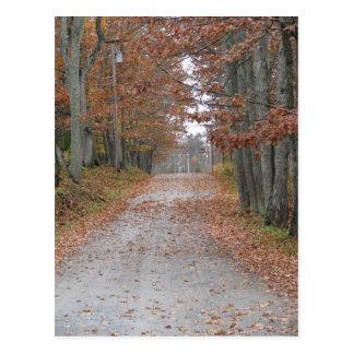 Autumn Road Postcard