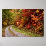 Autumn  Road  Print