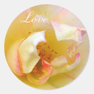 Autumn Rose Classic Round Sticker