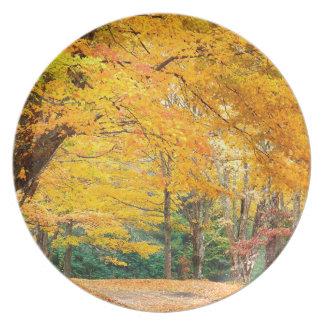 Autumn Rural Roadway Bass Lake Carolina Plate