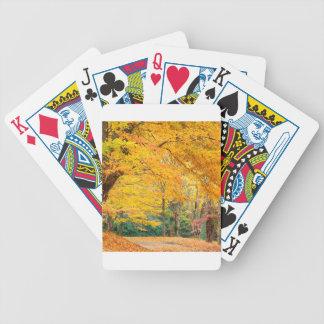 Autumn Rural Roadway Bass Lake Carolina Poker Cards