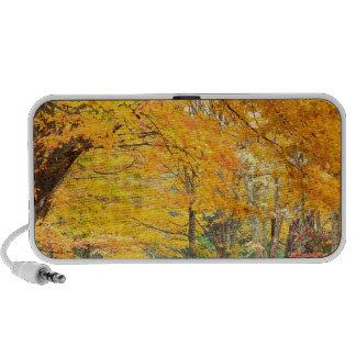 Autumn Rural Roadway Bass Lake Carolina iPhone Speaker