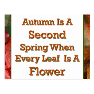 Autumn Saying Postcard