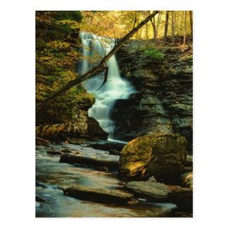 Autumn Scene of Fulmer Falls Postcard