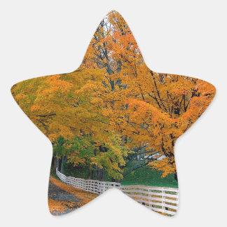 Autumn Scenic Backroad New Hampshire Star Sticker