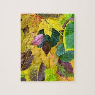 autumn season tree leaf texture pattern background jigsaw puzzle