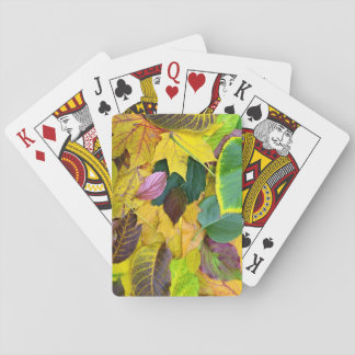 autumn season tree leaf texture pattern background playing cards