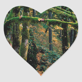 Autumn Silver State Park Oregon Heart Sticker