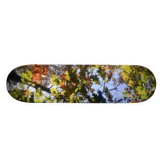 Autumn Skate Board Decks