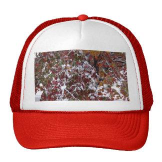 Autumn Snow Hat