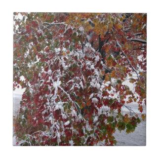 Autumn Snow Tile