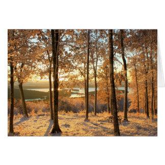 Autumn Snowstorm at Quabbin Reservoir Card