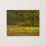 Autumn Sonata Jigsaw Puzzle