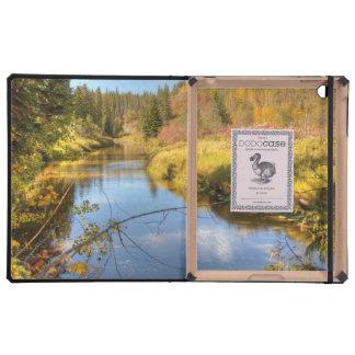 Autumn Splendor iPad Cover