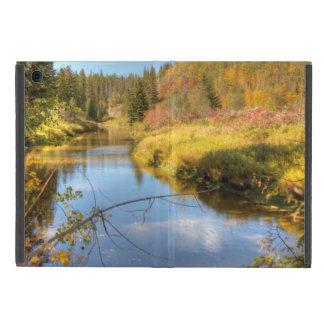 Autumn Splendor iPad Mini Case