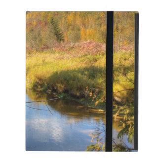 Autumn Splendor iPad Folio Cases