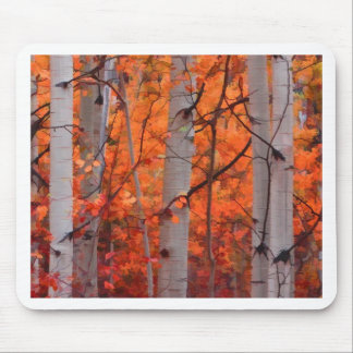 Autumn Splendor Mouse Pad