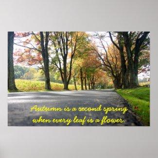 Autumn Splendor Photo Print print