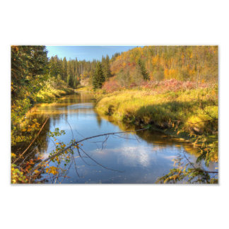 Autumn Splendor Art Photo