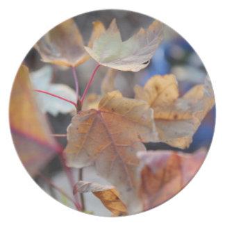 Autumn Splendor Plate