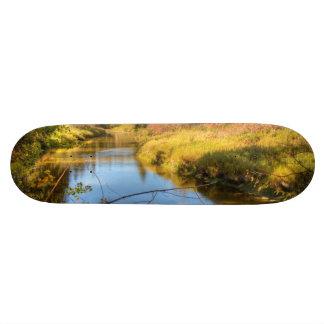 Autumn Splendor Skateboard Deck