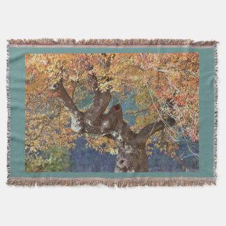 Autumn splendor throw blanket