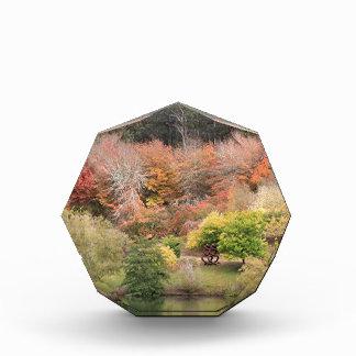 Autumn splendour, Adelaide Hills 2 Award