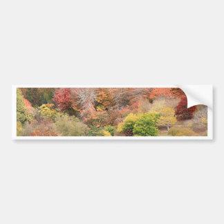 Autumn splendour, Adelaide Hills 2 Bumper Sticker