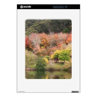 Autumn splendour, Adelaide Hills 2 iPad Skin