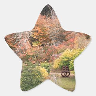 Autumn splendour, Adelaide Hills 2 Star Sticker