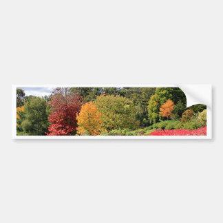 Autumn splendour, Adelaide Hills Bumper Sticker