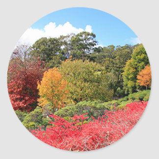 Autumn splendour, Adelaide Hills Classic Round Sticker