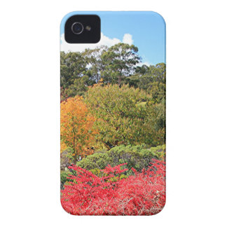 Autumn splendour, Adelaide Hills iPhone 4 Cover