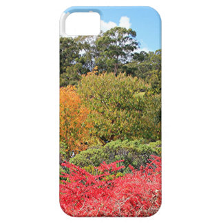Autumn splendour, Adelaide Hills iPhone SE/5/5s Case
