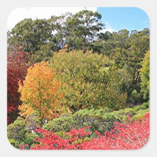Autumn splendour, Adelaide Hills Square Sticker