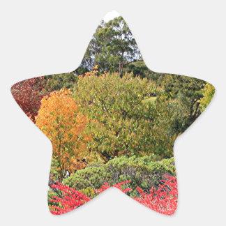 Autumn splendour, Adelaide Hills Star Sticker